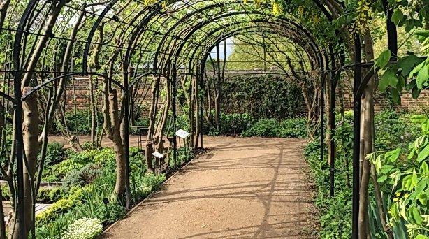 LTR - Kew Garden, avenue